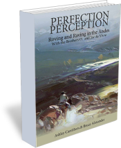 perception-book